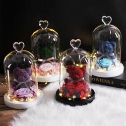 Eeuwige geconserveerde roos met teddybeer in glas - LED