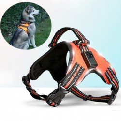 Dog harness - LED - flashing / reflective lights - safety night walk - waterproof