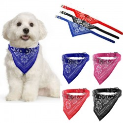 Adjustable collar with scarf - for dogs / cats / pets