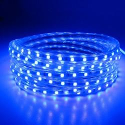 SMD 5050 AC 220V 60 LED - waterproof flexible Led strip light & power plug