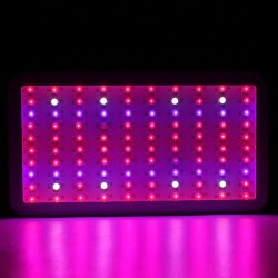 300W Mini Led Plant Grow Light Hydroponic Full Spectrum