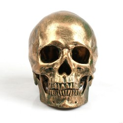 Bronze Human Skull Resin Craft
