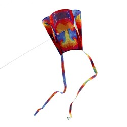 Outdoor colorful kite