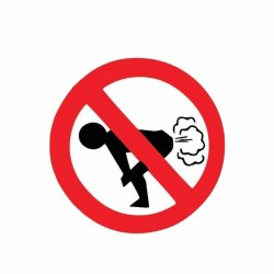 No Farting - auto sticker - 12 * 12cm