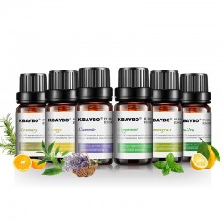 10ml * 6 - Ätherische Öle für Luftbefeuchter - Lavendel - Teebaum - Zitronengras - Rosmarin - Orange - Pfefferminze